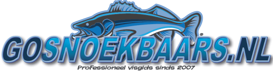 Logo Fishing Guide Daan Verbruggen